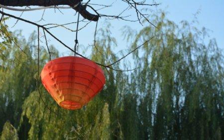 喜庆节日红灯笼图片