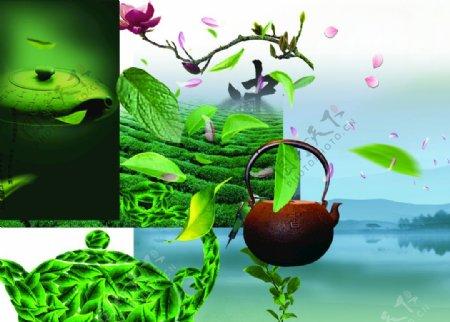 采茶制茶茶园茶叶素材图片
