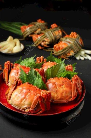 大闸蟹美食摄影图片