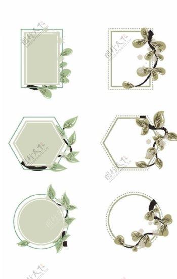 植物时子花纹边框○图片